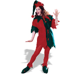 Complete Elf Adult Costume 100-113288